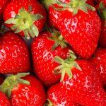 creative writes themed workshops strawberries